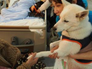 夢ちゃん患者さんと握手